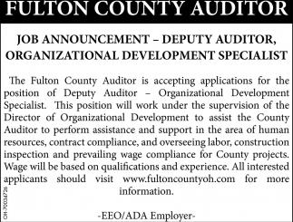 Deputy Auditor